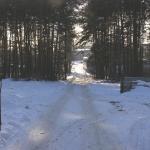 Дорога во внешний мир