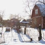 Сонные зимние дачки...